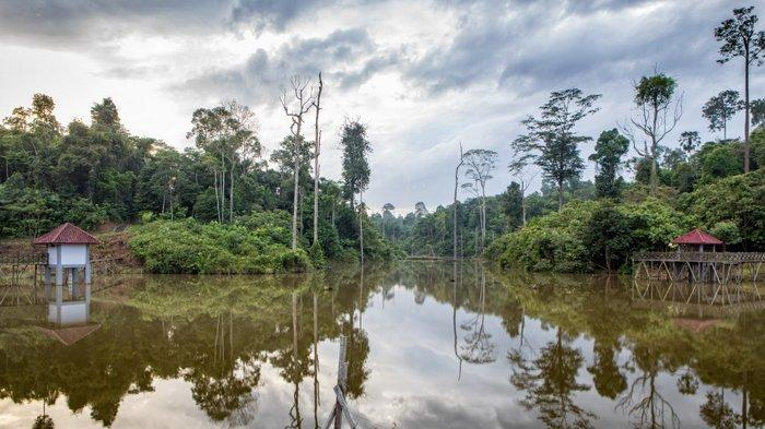 Hanya Bayar Sukarela, Kebun Raya Balikpapan Jadi Destinasi Wisata Pendidikan dan Lingkungan
