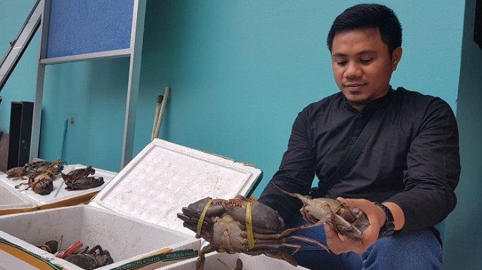 PascaDisidak Polisi, Kargo Bandara: Boleh atau Tidaknya Kepiting Dikirim Domain Balai Karantina