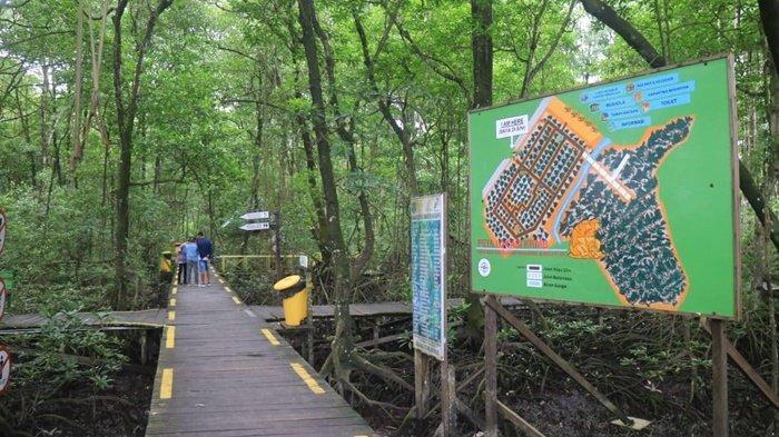 Ke Tarakan, Wajib Datangi Konservasi Mangrove dan Bekantan, Wisata Edukasi Mengenal Flora & Fauna - kkmb-1-12.jpg