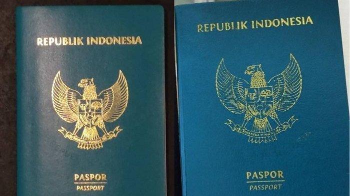 Jangan Bingung, Ini Cara Mengurus Paspor yang Hilang di Luar Negeri, Berikut Tahapapannya