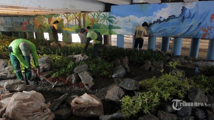 Penampakan Terbaru Kolong Jembatan yang Disidak Risma, Anies Baswedan Sulap jadi Lebih Indah