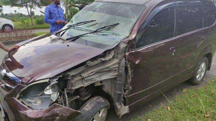 Mobil Staf Disdikbud Bontang Tabrak Pohon dan Tiang Listrik hingga Ringsek, Begini Kondisi Pengemudi