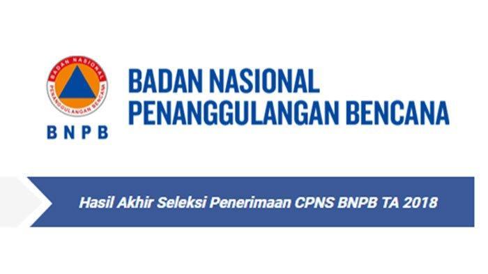 LINK PENGUMUMAN Hasil Akhir Tes CPNS 2018 Badan Nasional Penanggulangan Bencana (BNPB)