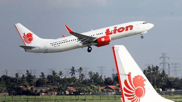 Mau Mendapatkan Tiket Pesawat Dengan Harga Terbaik Ikuti Tips Direktur Lion Air Ini Tribun Kaltim