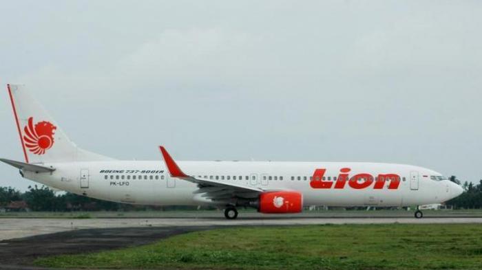 Maskapai Lion Air Menawarkan Gratis Bagasi 20 Kg ke Semua Rute Domestik, Ini Ketentuannya