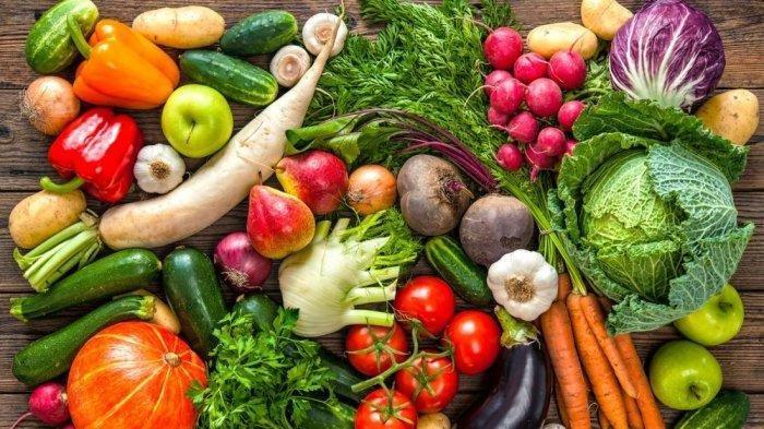 Segera Konsumsi untuk Cegah Penyakit, Berikut 15 Makanan yang Bisa Meningkatkan Daya Tahan Tubuh