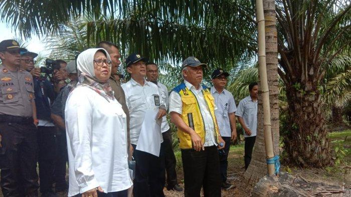 Pembangunan Bendungan Sepaku-Semoi di IKN Gunakan Lahan 378 Hektar  dan Telan Anggaran Rp 800 Miliar