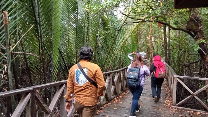 Wisata Desa Hutan Mangrove Ardi Mulyo Bulungan Mulai Banyak Dilirik