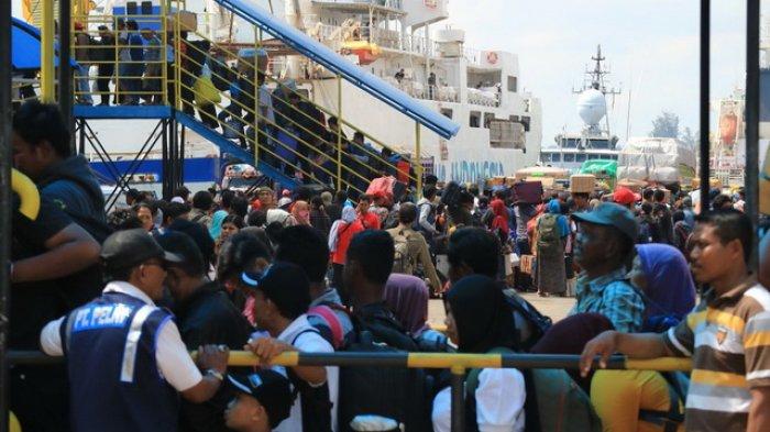 MUI Jelaskan Alasan Dibalik Fatwa Haram Mudik Saat Pandemi Corona 'Hukumnya Wajib Diikuti'