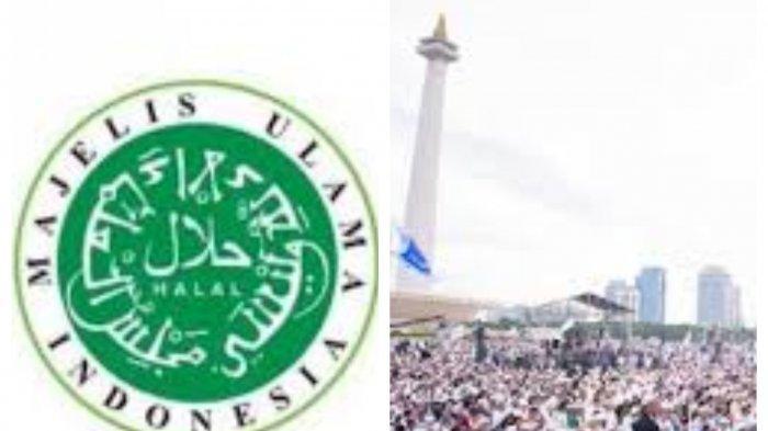 MUI Sebut Reuni 212 Monas Jakarta Tak Penting, Singgung Soal Ahok BTP dan Maulid Nabi Muhammad SAW