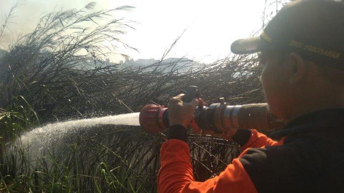 Dalam Waktu Dua Jam, Tiga Titik Api Ditemukan di Kota Sangatta, Lahan Diduga Dibakar