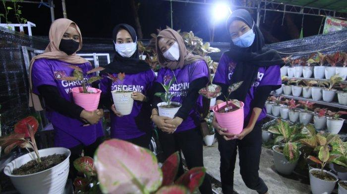 Hobi Tanaman Hias di Samarinda, Sajian Aglonema Mahakam Lampion Garden, Banyak Pengunjung Datang