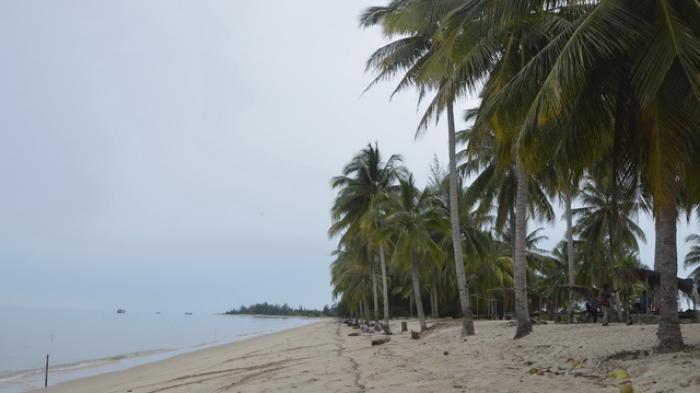Saat-saat Tertentu, Pantai Eksotik dengan Jejeran Pohon Kelapa ini Didatangi Ribuan Pengunjung