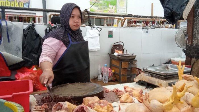 Pedagang Ayam Potong di Pasar Induk Tanjung Selor.TRIBUNKALTIM.CO/MAULANA ILHAM FAWDI
