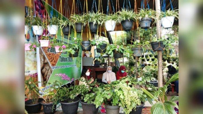 Wujudkan Industrialisasi Pangan Lokal di Kaltara