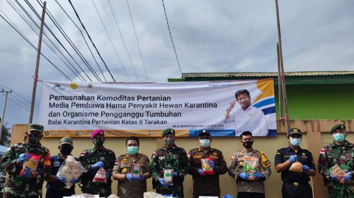 Balai Karantina Pertanian Tarakan Musnahkan 870,1 Kg Daging Ilegal