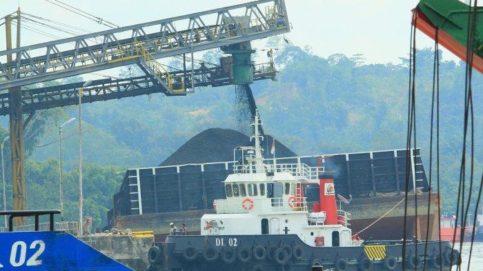 Gubernur Kaltara Minta Penambahan Kuota Produksi Batubara Sebesar 13 Juta Ton ke Kementrian ESDM