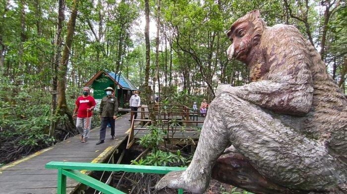 Ada 27 Jenis Mangrove dan 43 Bekantan di Lokasi Wisata KKMB, Selama Pandemi Covid Sepi Pengunjung