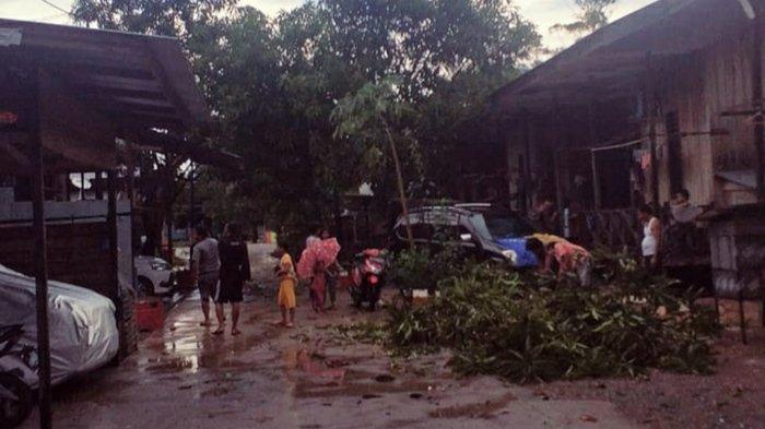 BREAKING NEWS - Hanya Sebentar Diguyur Hujan Deras dan Angin Kencang, Pohon Tumbang & Listrik Padam