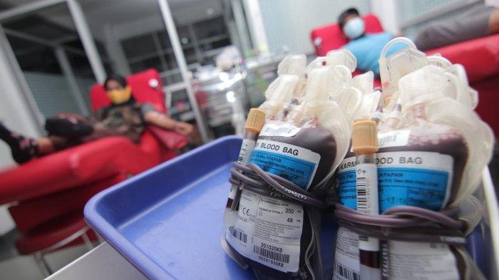 UPDATE Stok Darah PMI Balikpapan Kamis 9 September 2021, Golongan Tertentu Masih Terbatas