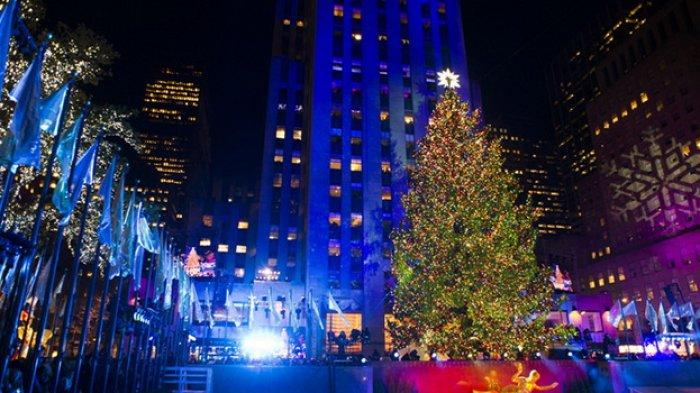 Legenda Cemara Dijadikan Pohon Natal, Mulai dari Tradisi Romawi Kuno hingga Kerajaan Inggris Abad 19