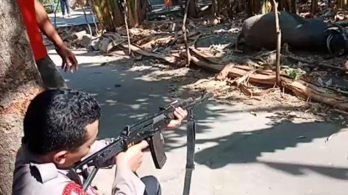 Seekor Kerbau Lari dan Mengamuk saat Akan Dikorbankan, Polisi Terpaksa Menembaknya