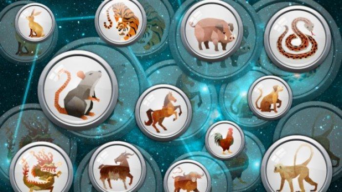 Prediksi Peruntungan Shio Hari Ini Selasa 9 Februari 2021, Jelang Imlek 2021, Shio Macan Energi Kuat