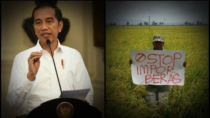 AKHIRNYA Jokowi Bersikap, Beber Harga Gabah Petani Indonesia Anjlok, Salahkan Perdebatan Impor Beras