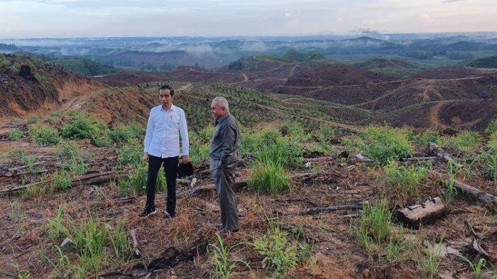 Kabar Pembangunan Ibu Kota Baru di Kalimantan Korbankan Lingkungan, Siti Nurbaya Bilang Tidak Benar