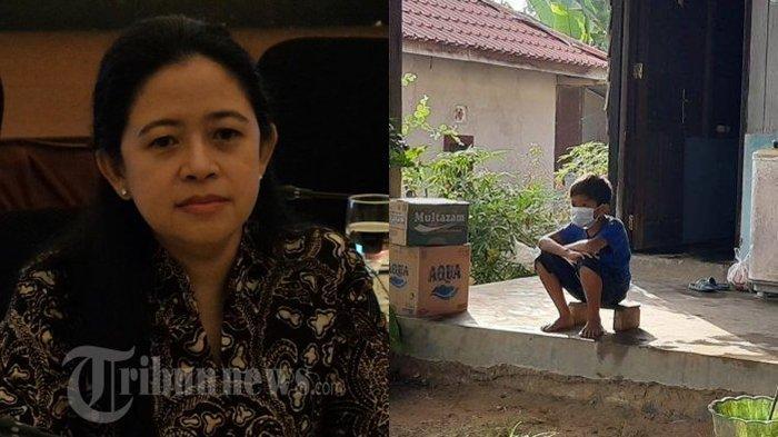 Ayah Ibunya Meninggal karena Covid-19, Kisah Vino Bikin Ketua DPR RI Bersedih, Puan: Pilu Hati Saya