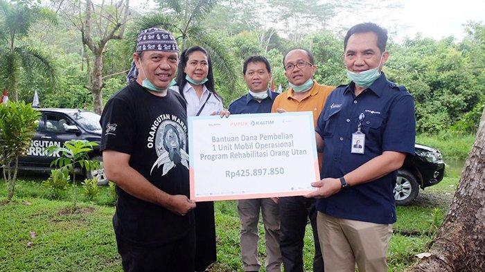 Dukung Penyelamatan Orangutan, Pupuk Kaltim Serahkan Bantuan Mobil Operasional ke BOSF