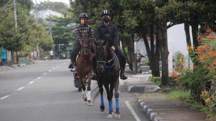 BERITA FOTO Kuda Milik Rahmad Masud jadi Perhatian Warga di Lapangan Merdeka Balikpapan