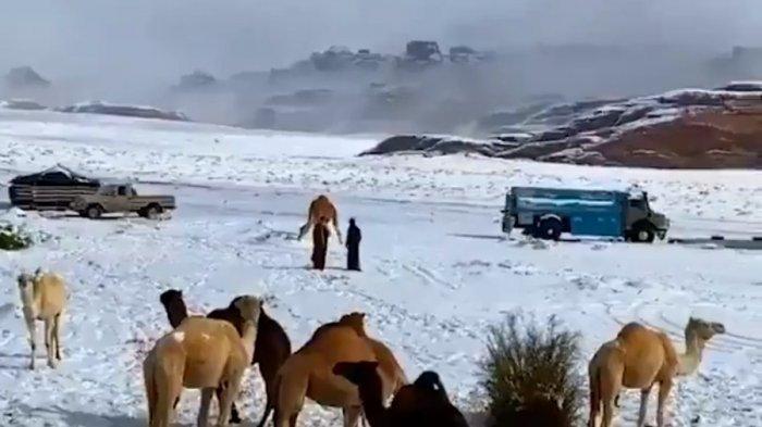 Biasanya Kering Kerontang, Mendadak Kota Tabuk di Arab Saudi Diselimuti Salju, Fenomena Apakah Ini?