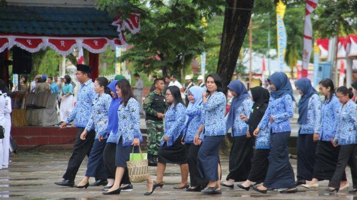 Tertarik Mengabdi di Pemprov Kaltara, Tunggu SK Gubernur  Formasi CPNS 2019 Terima 300 CPNS