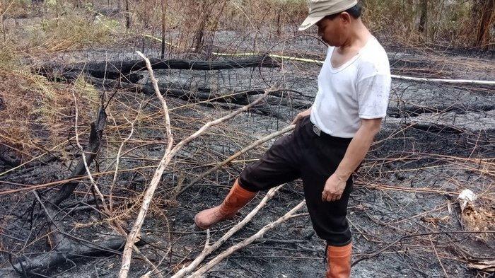 Hanya Pakai Kaos Oblong, Sekda PPU Turun Padamkan Kebakaran Lahan