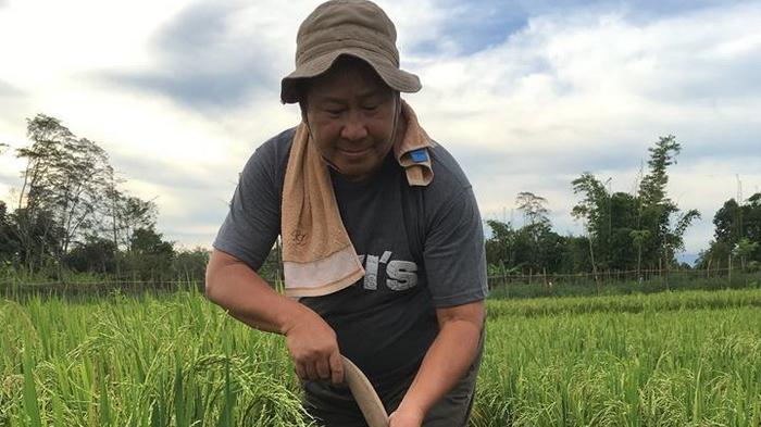 Mengintip Aktivitas Susno Duadji: Dulu Pegang Pistol, Sekarang Pegang Cangkul