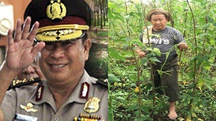 Jauh Setelah Ditangkap Buwas di Toilet, Kini Susno Duadji Jadi Petani Sukses, Adik: Bukan Pencitraan
