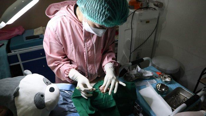 Tindakan kegiatan tanam benang di Alula Aesthetic Clinic Balikpapan, Kalimantan Timur.