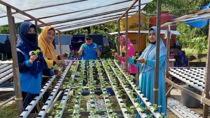 PWA Aisyiyah Kaltim Resmikan Gerakan 5 Juta Keluarga Menanam Tanaman Pangan Kala Pandemi Covid-19