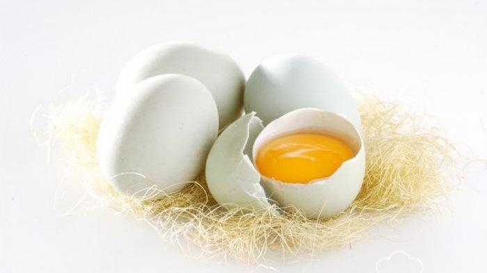 Inilah Keunggulan dan Kelebihan dari Telur Bebek, Salah Satunya Kandungan Asam Omega-3 Lebih Tinggi