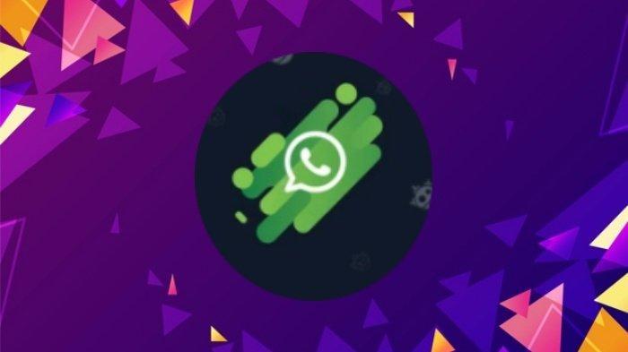 Tiba-tiba WhatsApp Diambil Alih? Cara Lapor & Amankan Akun WA Dibobol agar Terhindar dari Penipuan
