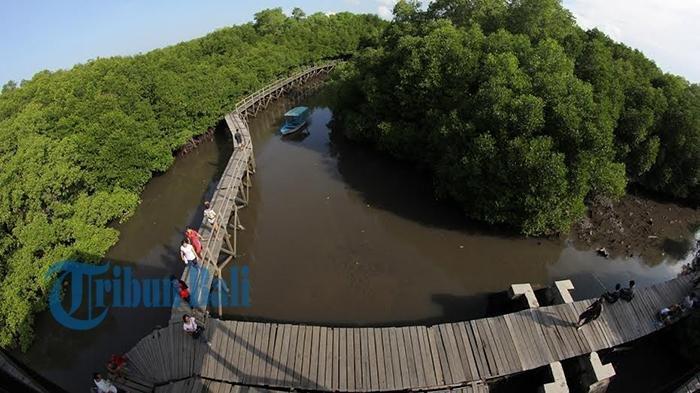 Salah Satunya Ada Hutan Mangrove, 10 Tempat Wisata di Bali yang Menawarkan Spot Foto Instagramable