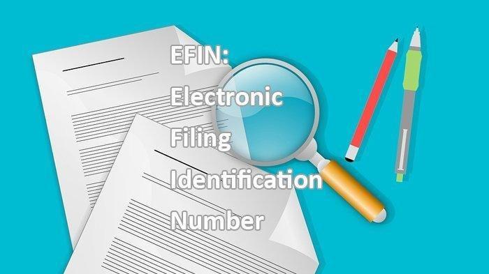 Mau Isi Pajak Tapi Lupa EFIN, Ini Cara Mudahnya Mendapatkan EFIN Online untuk Wajib Pajak Pribadi