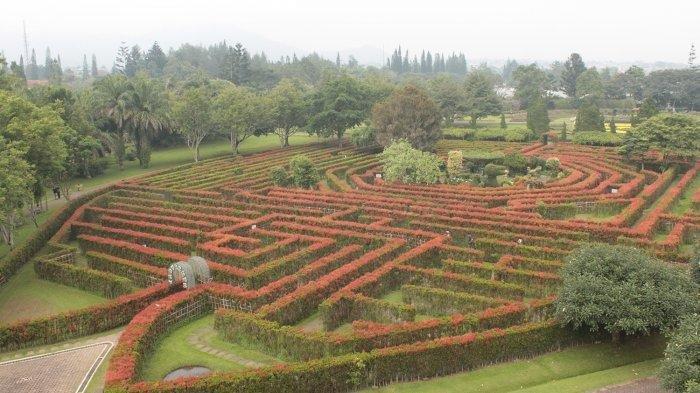 Taman Bunga Nusantara Terbaru