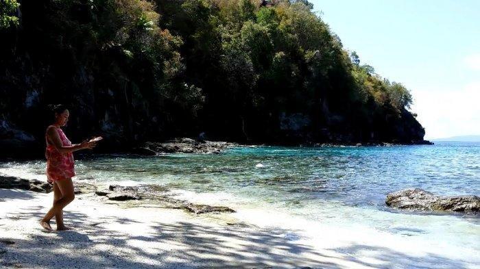 Waspada Terhadap Ubur-ubur, Inilah Bahaya-bahaya yang Mengintai saat Liburan ke Pantai