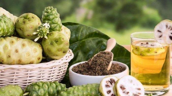 Buah Mengkudu Punya 4 Manfaat Mujarab, Meski Bau dan Pahit, Benarkah Bisa Lawan Stroke & Kolesterol?