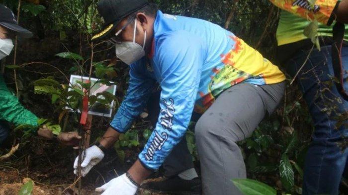 Peringatan Hari Lingkungan Hidup Sedunia di Kutai Timur, Pemkab Kutim Menanam 50 Pohon Ulin