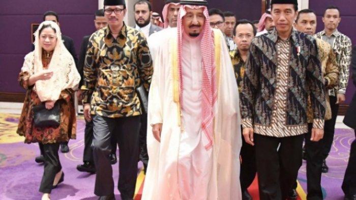 Update Ibadah Haji 2020, Jokowi Telpon Raja Salman, Pemerintah Siapkan 3 Alternatif Berikut Ini