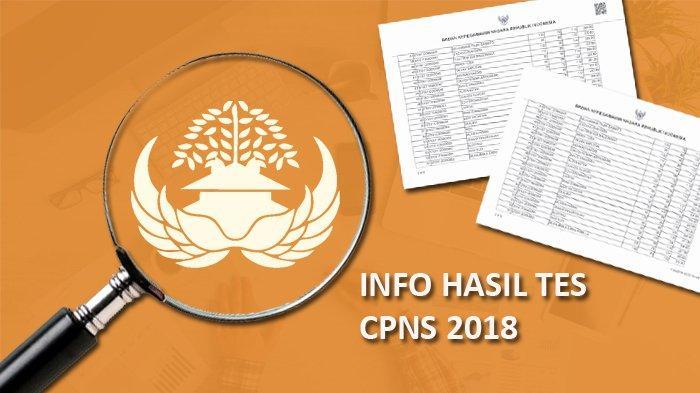 Jangan Ketinggalan Informasi, 446 Instansi Sudah Umumkan Hasil SKD dan Syarat SKB CPNS 2018