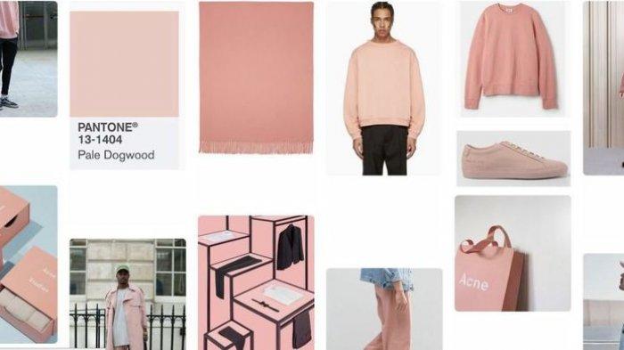 Pink, Warna Feminin Ini Jadi Tren Generasi Milenial untuk Pria dan Wanita